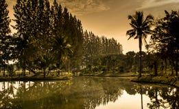 Jardin de coucher du soleil Photos stock