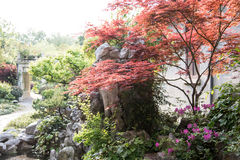 Jardin de cour Photographie stock libre de droits