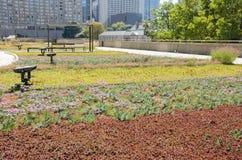 Jardin de dessus de toit photos libres de droits
