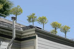 Jardin de dessus de toit photographie stock libre de droits