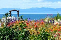 Jardin de fleur étonnant photos libres de droits