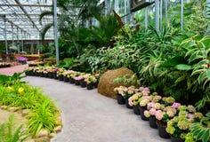 Jardin de fleur Photographie stock