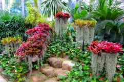 Jardin de fleur Photographie stock libre de droits