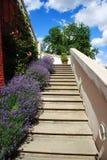 Jardin de fleur vers le haut d'escalier photo libre de droits