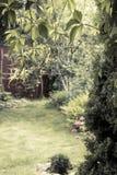 Jardin de floraison de vintage classique avec l'espace de copie Photographie stock libre de droits