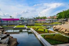 Jardin de flottement Photographie stock libre de droits