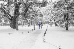 Jardin de Kenrokuen sous la neige Photographie stock libre de droits