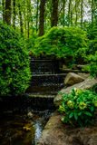 Jardin de Keukenhof, Pays-Bas Photo stock