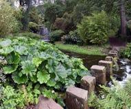 Jardin de l'Himalaya à la Chambre de Harewood, Leeds, West Yorkshire, R-U Photos libres de droits