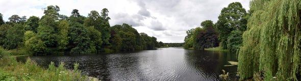 Jardin de l'Himalaya à la Chambre de Harewood, Leeds, West Yorkshire, R-U Image stock