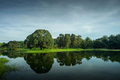 Jardin de lac Taiping photo libre de droits