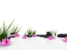Jardin de lotus illustration de vecteur