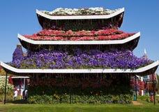 Jardin de miracle, Dubaï Photos libres de droits