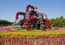 Jardin de miracle, Dubaï Images libres de droits