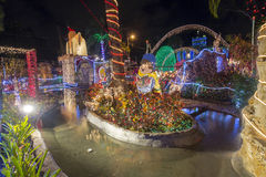 Jardin de Noël image stock