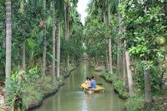 Jardin de noix de coco de tourisme en nature à après la pluie Nakhon Pathom Images stock