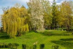 Jardin de paradis Photo stock