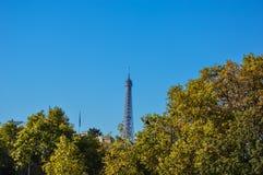 Jardin de Paris avec des arbres et l'automne de bâtiments Image libre de droits