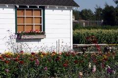 Jardin de pays Images stock