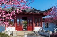 Jardin de plumblossom de Donghu au printemps photos stock