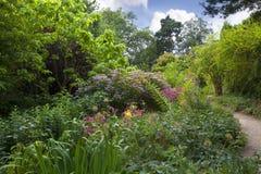Jardin de région boisée, Angleterre Images stock