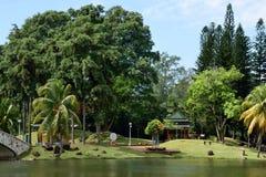 Jardin de régions boisées Images libres de droits
