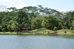 Jardin de régions boisées Photos libres de droits
