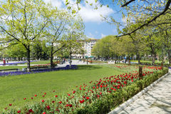 Jardin de ressort avec des tulipes devant le palais national de la culture, Sofia, Bulgarie Photo libre de droits