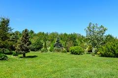 Jardin de ressort un jour ensoleillé Photo stock