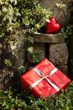 Jardin de rocaille avec un coeur rouge et un présent Photos libres de droits