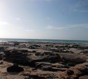 Jardin de roche sur la plage de câble Images libres de droits
