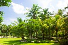 Jardin de Ston Image stock