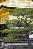 Jardin de temple images stock