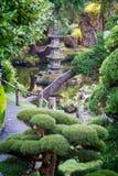 Jardin de thé japonais Photos libres de droits