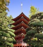 Jardin de thé japonais Photographie stock libre de droits