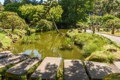 Jardin de thé japonais Photo stock