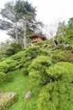 Jardin de thé japonais, San Francisco Image stock