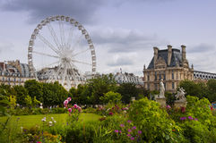 Jardin de Tuileries Royalty Free Stock Photo