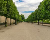 Jardin de tuilleries in france. View of the park in perspective with the trees around giving a sense of calm on a quiet road stock photography