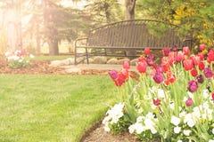 Jardin de tulipe Image stock