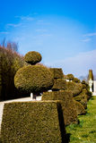 Jardin de Versailles Image stock