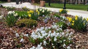 Jardin de ville Photo libre de droits