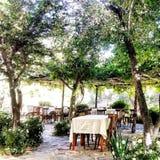 Jardin de vin Photographie stock libre de droits