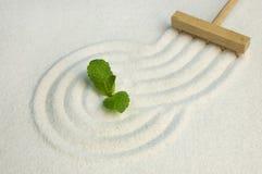 Jardin de zen avec la lame verte photographie stock