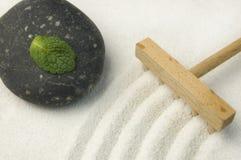Jardin de zen avec la lame verte Images libres de droits