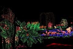 Jardin des lumières Photographie stock libre de droits