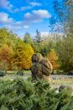 Jardin des pierres des ammonites sur le rivage du lac Photographie stock
