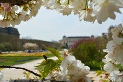 Jardin des Plantes Imágenes de archivo libres de regalías