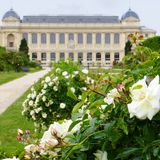 Jardin des Plantes, Paris, France Stock Photography
