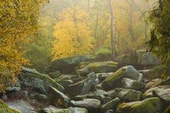 Jardin des roches Images libres de droits